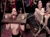 Sesso BDSM in pubblico con delle troie assatanate